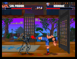 Shadow Fighter CD32 070