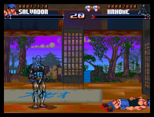 Shadow Fighter CD32 073