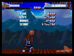 Shadow Fighter CD32 097