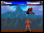 Shadow Fighter CD32 100
