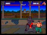 Shadow Fighter CD32 104