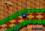 Sonic 3D Blast Megadrive 013