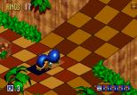 Sonic 3D Blast Megadrive 015