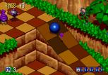Sonic 3D Blast Megadrive 018