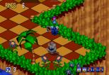 Sonic 3D Blast Megadrive 027