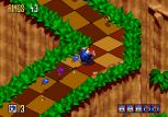 Sonic 3D Blast Megadrive 035