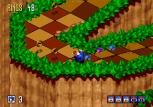 Sonic 3D Blast Megadrive 036