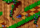 Sonic 3D Blast Megadrive 049