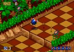Sonic 3D Blast Megadrive 052