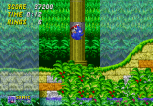 Sonic the Hedgehog 2 Megadrive 052