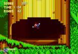 Sonic the Hedgehog 3 Megadrive 017