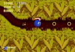 Sonic the Hedgehog 3 Megadrive 041