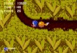 Sonic the Hedgehog 3 Megadrive 071