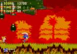 Sonic the Hedgehog 3 Megadrive 095