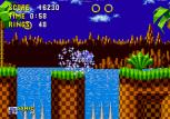 Sonic the Hedgehog Megadrive 030