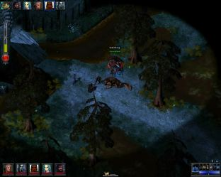 The Temple of Elemental Evil PC 20