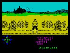 Tir Na Nog ZX Spectrum 021
