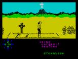 Tir Na Nog ZX Spectrum 029