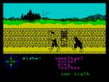 Tir Na Nog ZX Spectrum 036