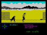 Tir Na Nog ZX Spectrum 049