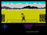 Tir Na Nog ZX Spectrum 061
