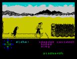 Tir Na Nog ZX Spectrum 063