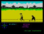 Tir Na Nog ZX Spectrum 073