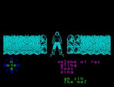 Tir Na Nog ZX Spectrum 077