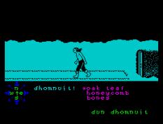 Tir Na Nog ZX Spectrum 087