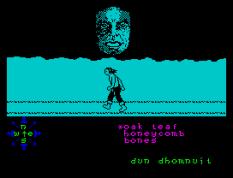 Tir Na Nog ZX Spectrum 088