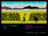Tir Na Nog ZX Spectrum 090