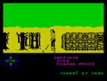 Tir Na Nog ZX Spectrum 092