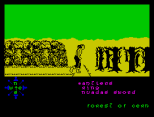 Tir Na Nog ZX Spectrum 094