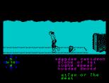 Tir Na Nog ZX Spectrum 101