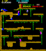 Arabian Arcade 13