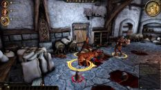 Dragon Age - Origins PC 011