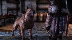 Dragon Age - Origins PC 012