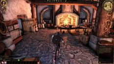 Dragon Age - Origins PC 013