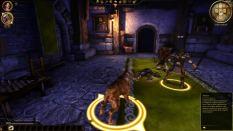 Dragon Age - Origins PC 021