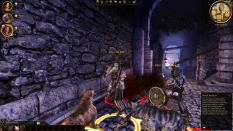 Dragon Age - Origins PC 028