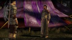 Dragon Age - Origins PC 055