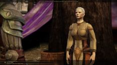 Dragon Age - Origins PC 065