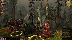 Dragon Age - Origins PC 082