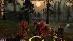 Dragon Age - Origins PC 085
