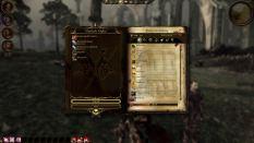 Dragon Age - Origins PC 090