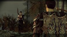 Dragon Age - Origins PC 092