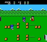 Little Ninja Brothers NES 030