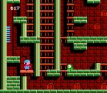 Milon's Secret Castle NES 46