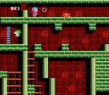 Milon's Secret Castle NES 50