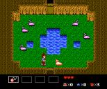 Startropics NES 015